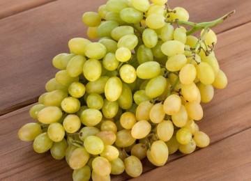 Особенности виноградного сорта Кишмиш белый